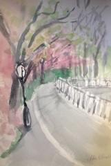Central Park in Pink Watercolor by Lesley A. Powell 11 x 17 $150
