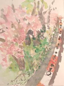 Orange Barrier in Spring 2
